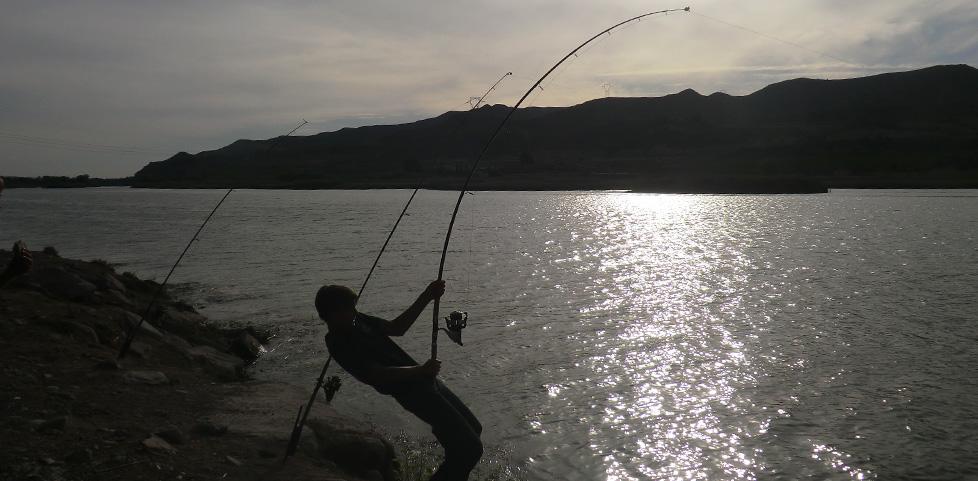 Hart am Fisch - auch im Winter